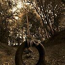 Tyre swing by GlennRoger