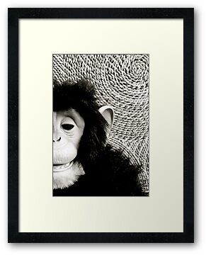 Shades Of Monkey Grey by Ashleigh Robb