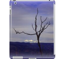 View from Jerome iPad Case/Skin
