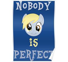 Derp - Nobody is Perfect Poster
