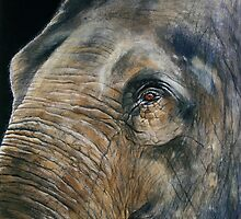 A Watchful Eye *Traditional Art in Watercolor* by deborah zaragoza