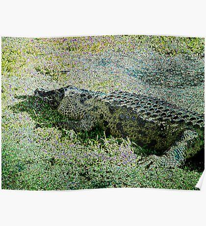 Alligator 4 Poster
