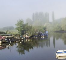Mist on the River Frome Wareham UK by Pauline Tims