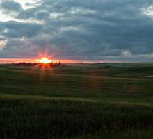 Sundown on John Martin Country by Coniferous