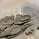 Sand and rocks, Cape Conran, Gippsland by Roz McQuillan