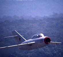 Mig-15 @ Family Air Day, Nowra, Australia 1997 by muz2142