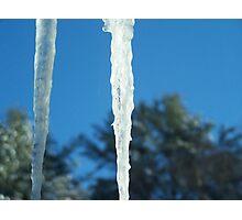 Winter in the Adirondacks Photographic Print