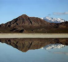 Bonnelville Salt Flat by Patricia Betts