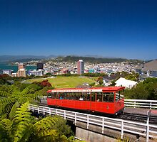 Wellington by parischris