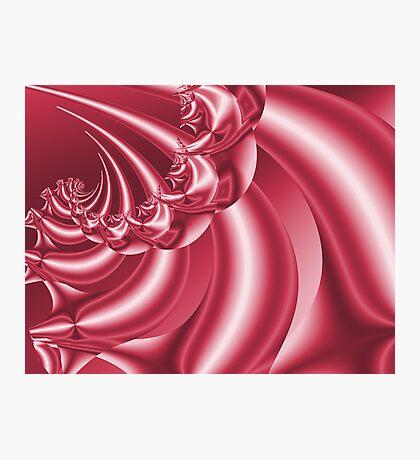Peppermint Swirl Photographic Print