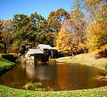 Mabry Mill In Autumn by Patricia Betts