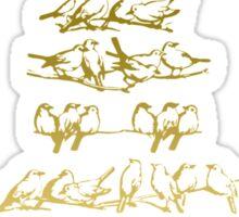 Bird Watching Sticker