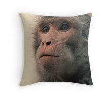 Evolutionary Thought Throw Pillow