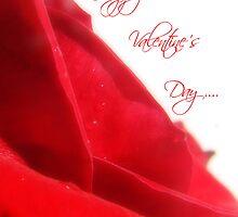 Happy Valentine's Day Card by Suni Pruett