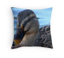 Beautiful Bird Throw Pillow