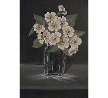 Dark Study of Flowers Photographic Print