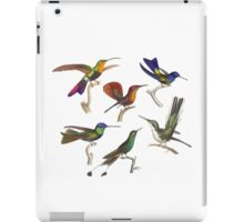 Six Hummingbirds Antique Print iPad Case/Skin