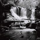 Horseshoe Falls, Mount Field National Park by John  Cuthbertson | www.johncuthbertson.com