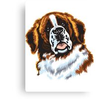 saint bernard head Canvas Print