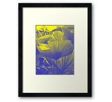 Frond : Photography by Alys Griffiths Framed Print
