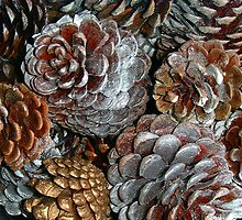 Pine Cones by Mibby
