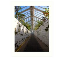 Victorian Glasshouse Art Print