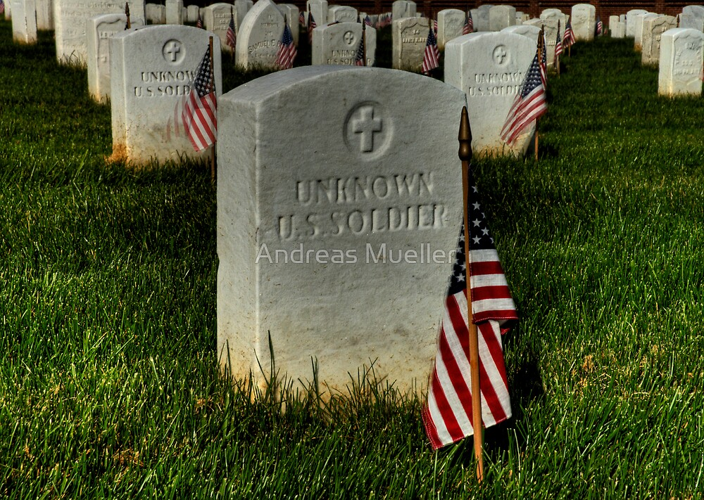 Unknown US Soldier by Andreas Mueller