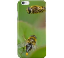 Hoverfly Egg Laying ? iPhone Case/Skin