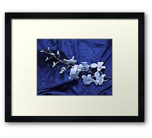 Orchid Stalk Framed Print