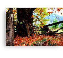 Through Autumns Golden Gown... Canvas Print