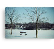 Frozen Solace  Canvas Print