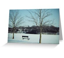 Frozen Solace  Greeting Card