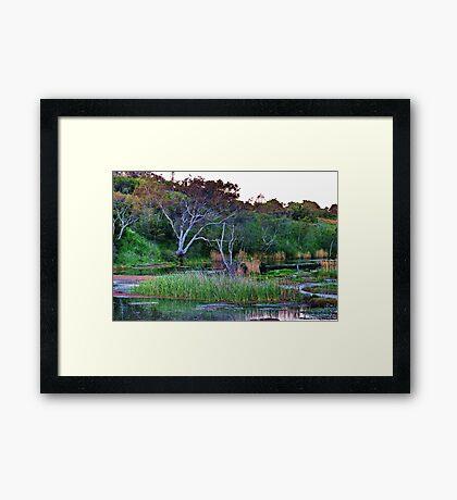 """Serenity"" Framed Print"