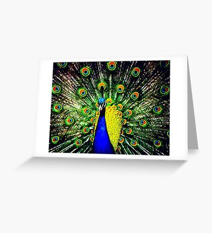 Peacock Displaying Greeting Card
