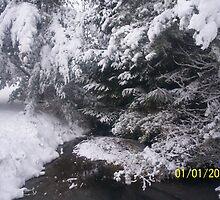 snowy creek 2 by KraZyGuy78