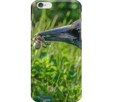 Magpie with Spider iPhone Case/Skin