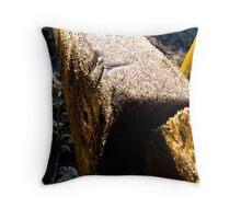 Hill Holt Frost Throw Pillow