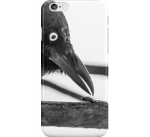 Little Raven and Caterpillar iPhone Case/Skin