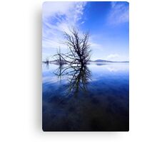 Lake Rorschach Canvas Print