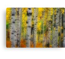 Aspen Dreams Canvas Print