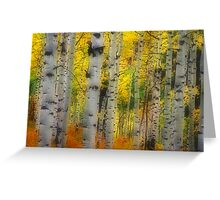 Aspen Dreams Greeting Card