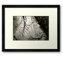 Reflection in a puddle Framed Print