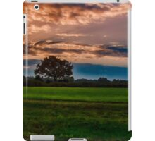 Rio Martino iPad Case/Skin