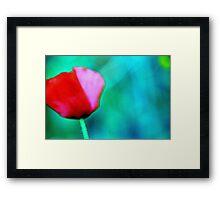 Lonely papavero Framed Print