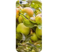 Little Green Apples iPhone Case/Skin