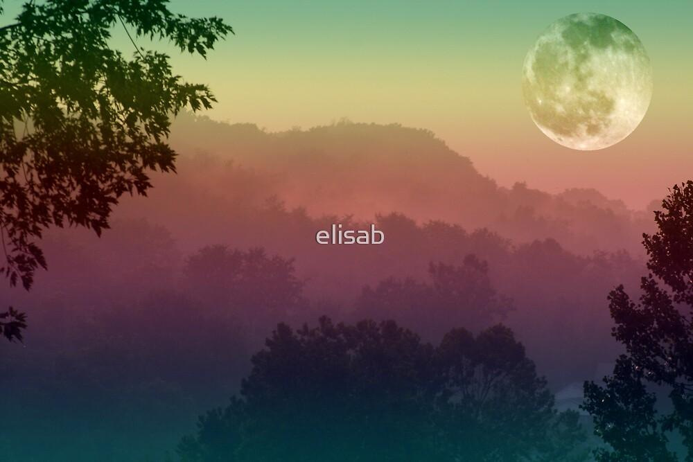 Misty Moon by elisab