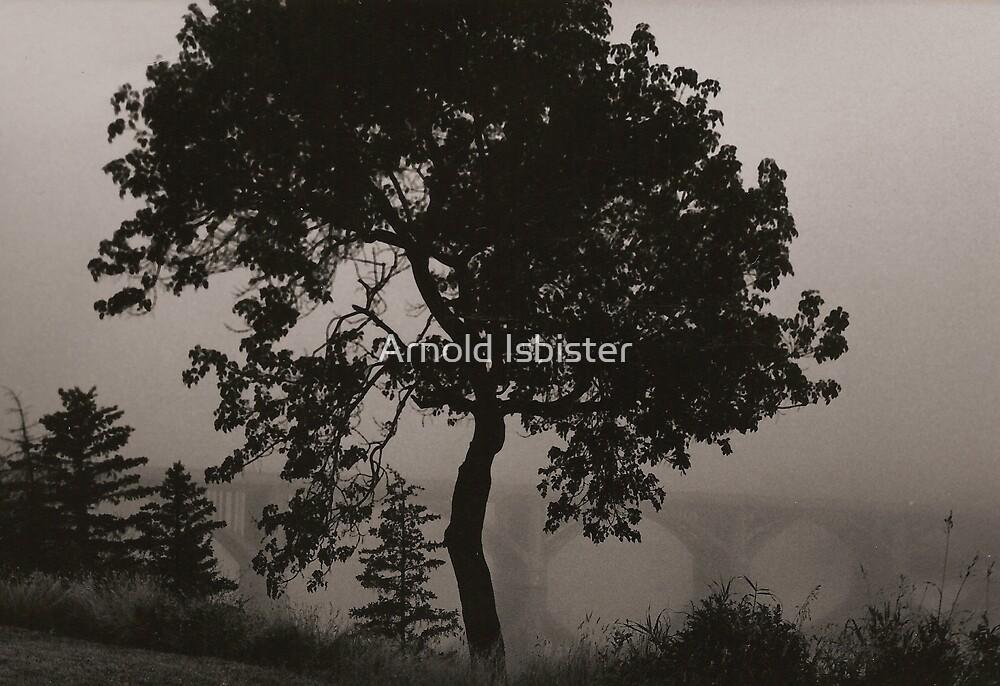 Dark Elm by Arnold Isbister