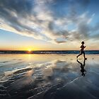 Sunset Run by Mieke Boynton