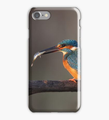Kingfisher with fish iPhone Case/Skin
