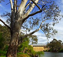 Murray River at Lake Hume by Darren Stones